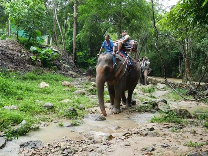 Koh Samui Elephant Trekking Trip at Namuang Waterfall Number 1 camp