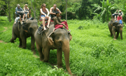 elephant riding koh samui